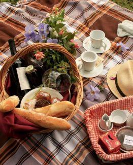 29b7f609e08a9bacbc35ea144bba1d75 fall picnic country picnic 262x325 - Ontbijtservice Tholen